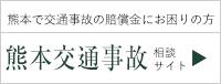 熊本交通事故サイト